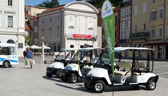 Električna vozila v Sloveniji