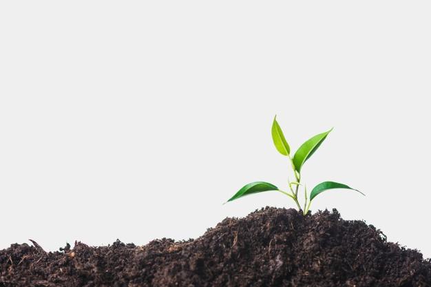 Topla greda primerna tudi za večje število rastlin