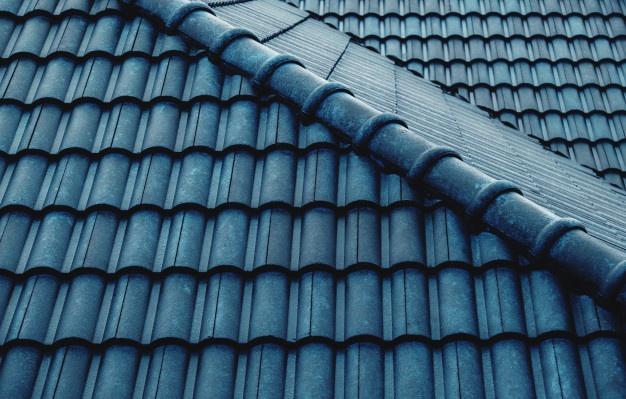 Strešniki za zaščito strehe